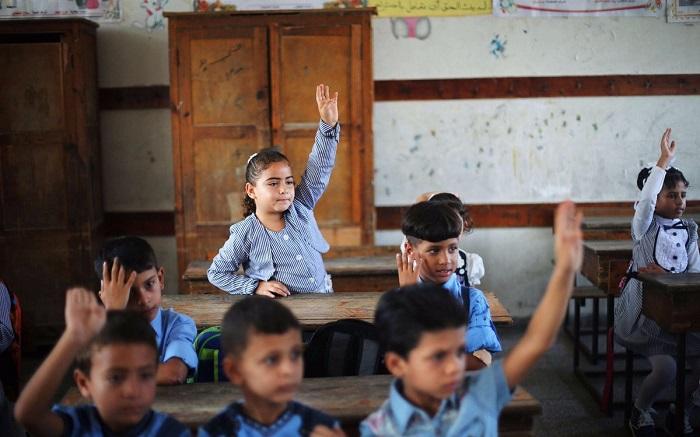التربية والتعليم:
