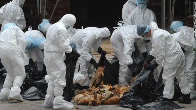 وفاة مصرية بإنفلونزا