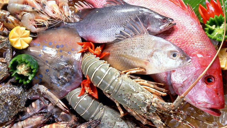 تناول السمك يحمي