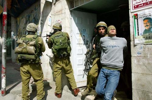 الاحتلال يعتقل 12