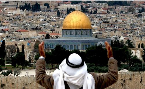 فلسطينيون ينظمون