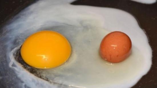 حادثة غريبة.. وجدا بيضة داخل البيضة!