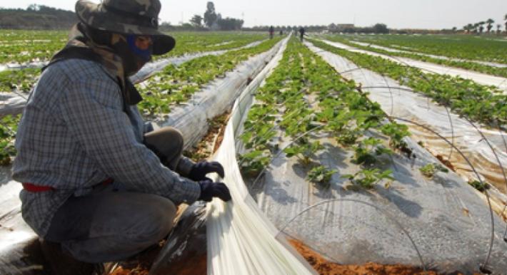 ظروف العمال التايلنديين في