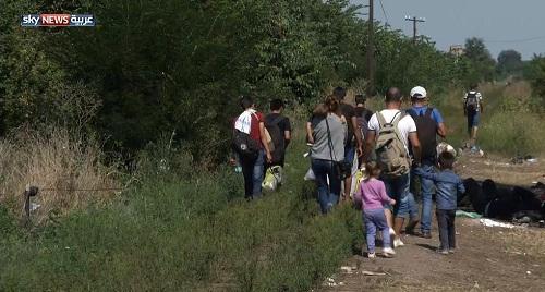 حدود المجر.. أسلاك