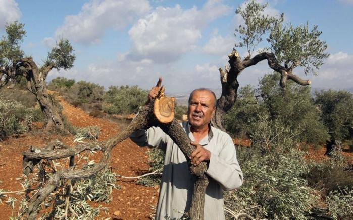 توقعات خبراء في الشأن الإسرائيلي لـ