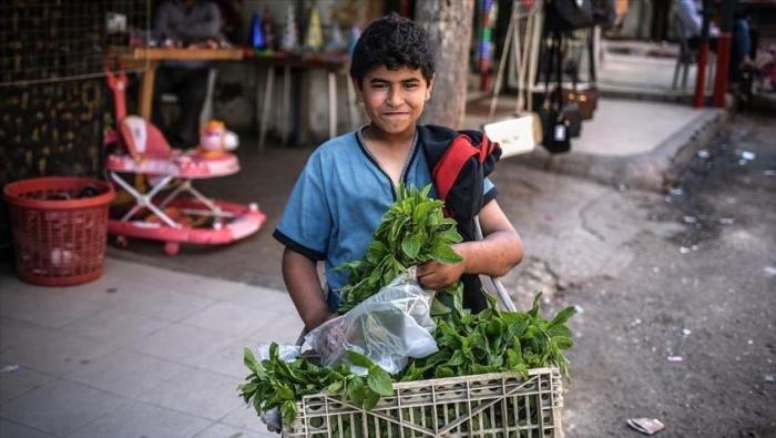 الامم المتحدة: الفلسطينيون يعيشون حياة غير صحية لانعدام الأمن الغذائي