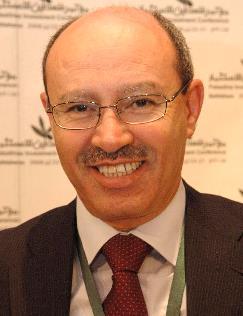 إتفاقية الكهرباء مع إسرائيل،نقل صلاحيات قطاعية... أم إعادة تنظيم تجارية  / بقلم: د. حسن ابو لبده*