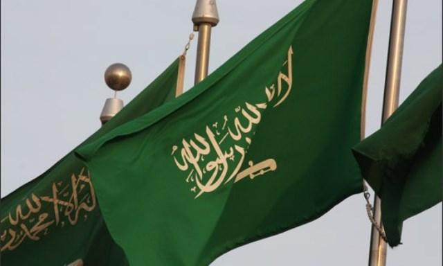 السعودية تطلق مجلساً
