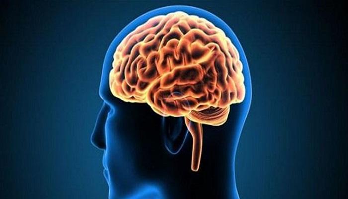 مكمّل غذائي للدماغ قد يحسن الذاكرة اللفظية والوظيفة التنفيذية!
