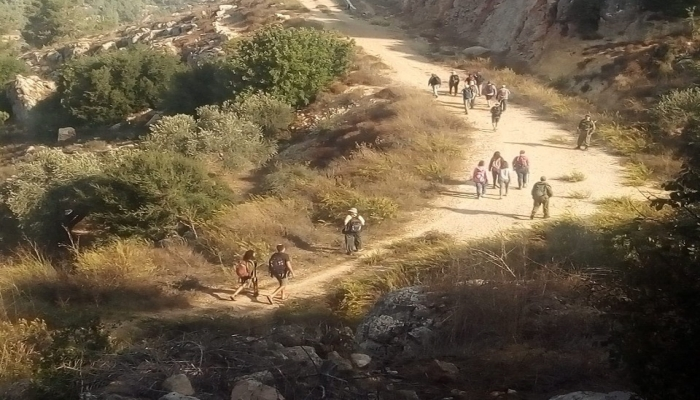 مستوطنون يغلقون طريقا زراعية جنوب الخليل