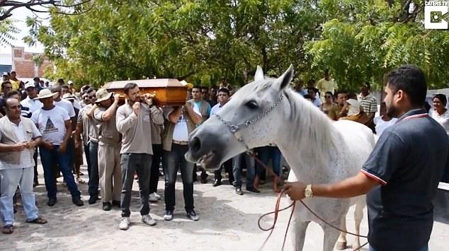 حصان يبكي وفاة صاحبه ويُشيعه إلى القبر (فيديو)