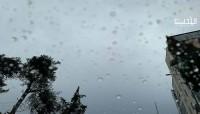 الطقس: أمطار رعدية